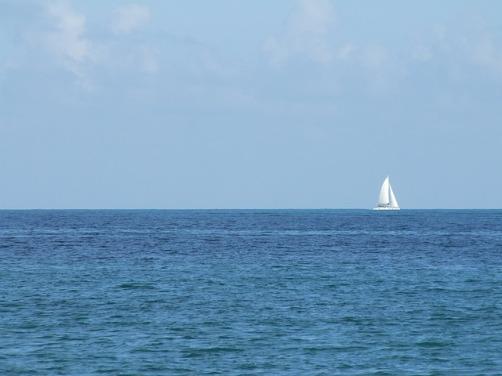 sailboat-410034_640